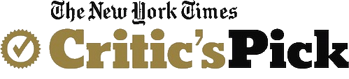 New York Times Critic's Choice Award